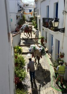 summer-frigiliana